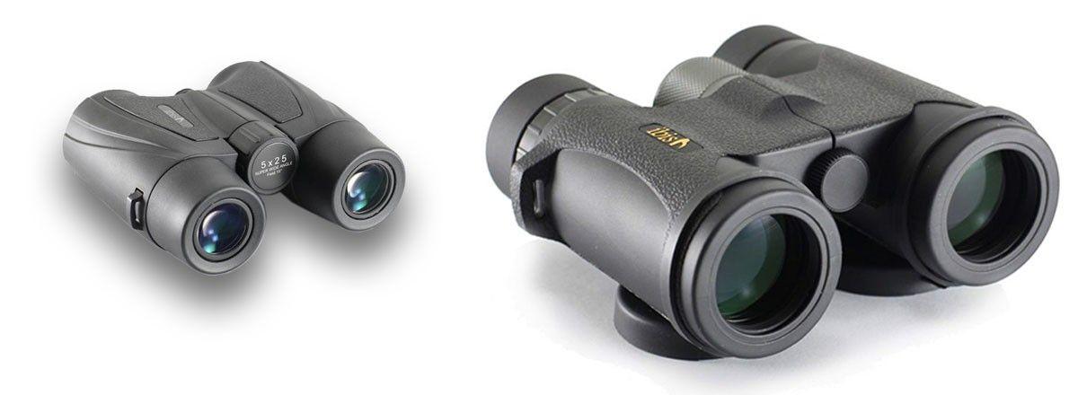 Ibis Optics